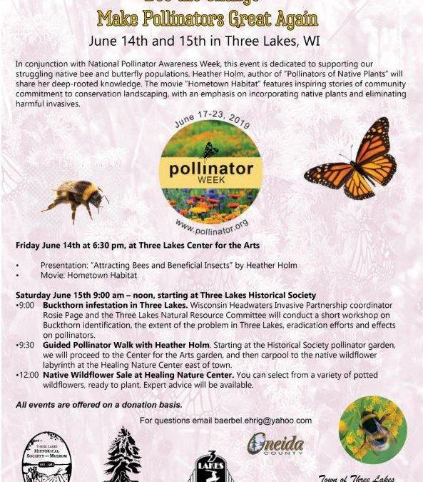 Bee the Change – Make Pollinators Great Again